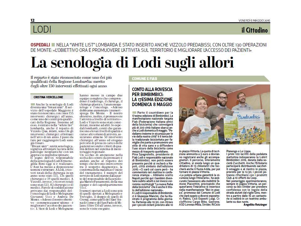 il Cittadino (1)